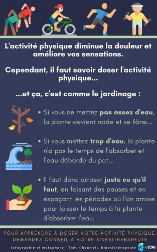 InfographieTheoJardinage
